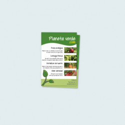 Folleto flyer 10 x 15 cm